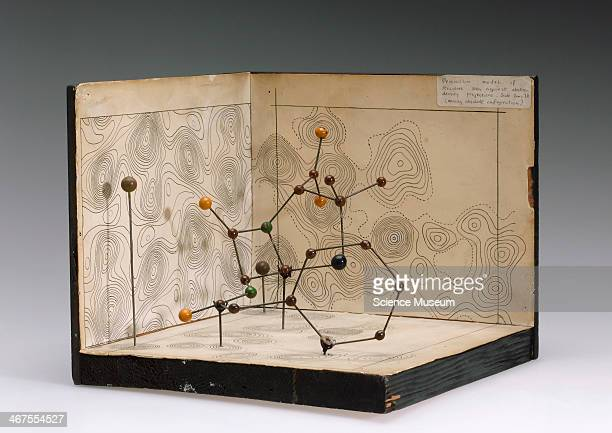 A molecular model of penicillin seen against electron density projections as demonstrated by British chemist Dorothy Hodgkin in 1945 Front three...