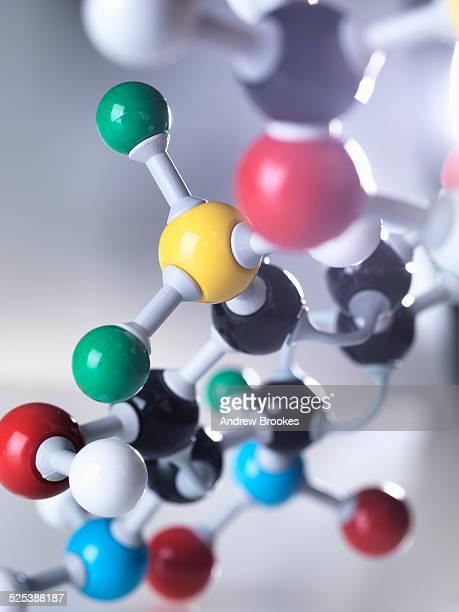 Molecular model