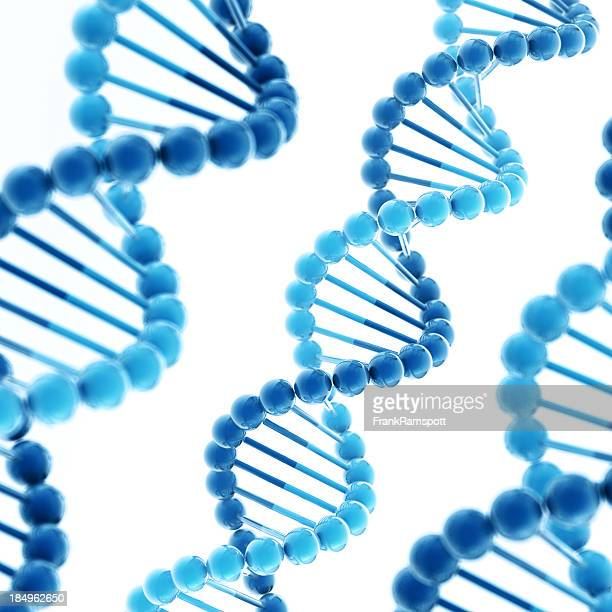dna molecule square - frank ramspott stock pictures, royalty-free photos & images
