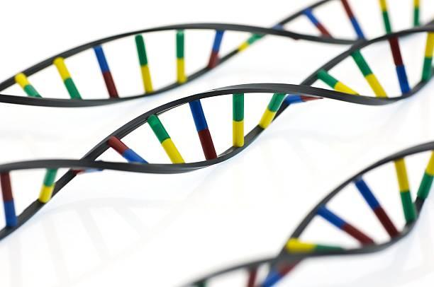 DNA Molecules Wall Art