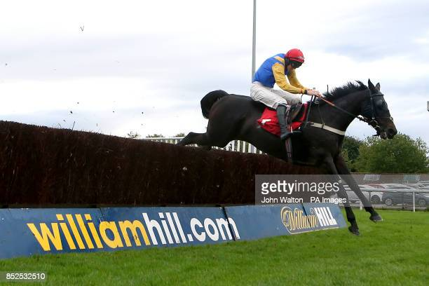 Moleskin ridden by Jack Doyle during the William Hill iPhone iPad iPad Mini Handicap Chase