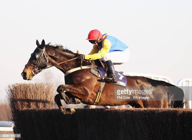 Moleskin ridden by Paul Maloney clears the last to win the williamhillcom Novices' Handicap Chase at Kempton Park Racecourse Sunbury on Thames
