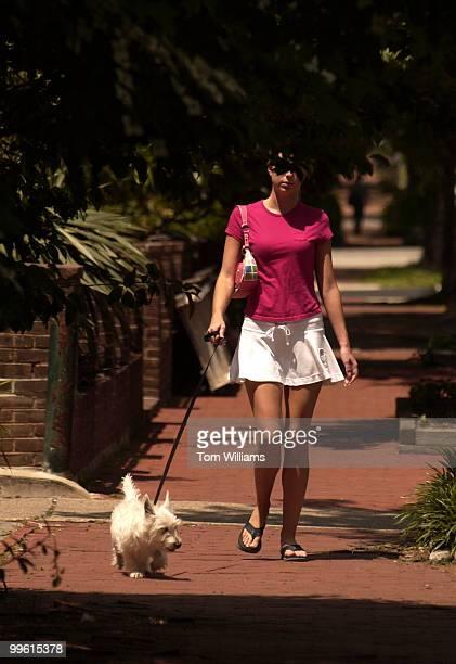 Molly Murphy of Capitol Hill walks her West Highland White Terrier 'Simon' Wednesday on 9th Street NE
