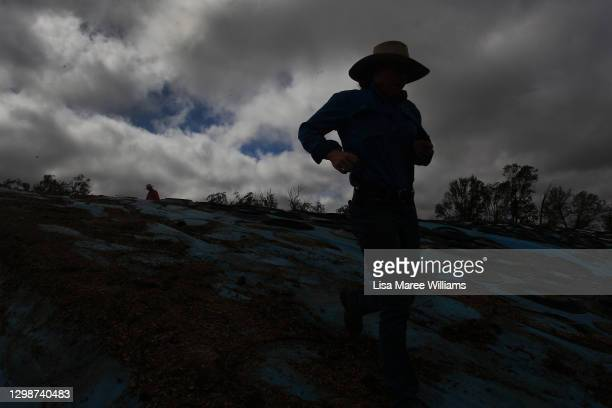 Molly Penfold prepares to pull back tarp covering silage for cattle feed at 'Mamaree' on January 19, 2021 in Meandarra, Australia. COVID-19 and the...