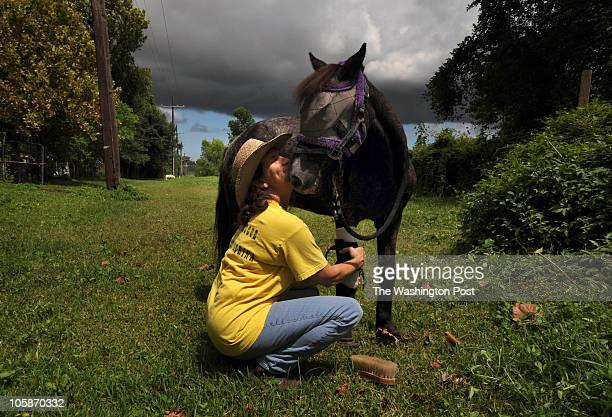 Molly the Pony and her guardian Kaye Harris as storm clouds gather at their home in St Rose LA near New Orleans Kaye also rescued a pony with...