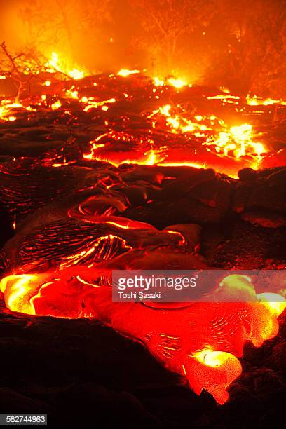 molten lava burns the forest at night - kalapana stock pictures, royalty-free photos & images