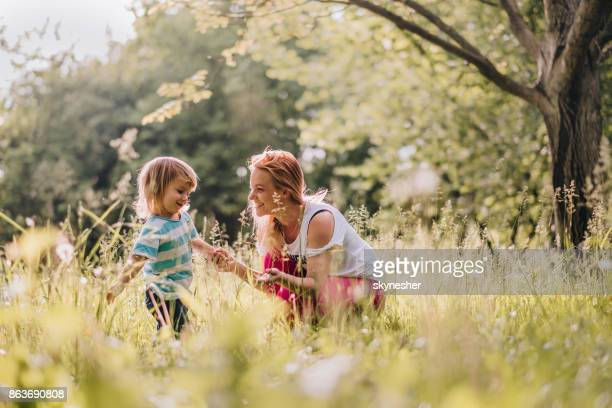mom and son are playing together in nature - nanny stock photos and pictures