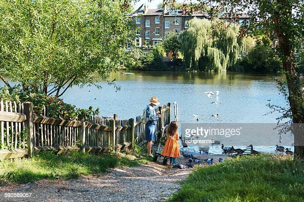 Mom and young girl feeding Swan, Hampstead Heath