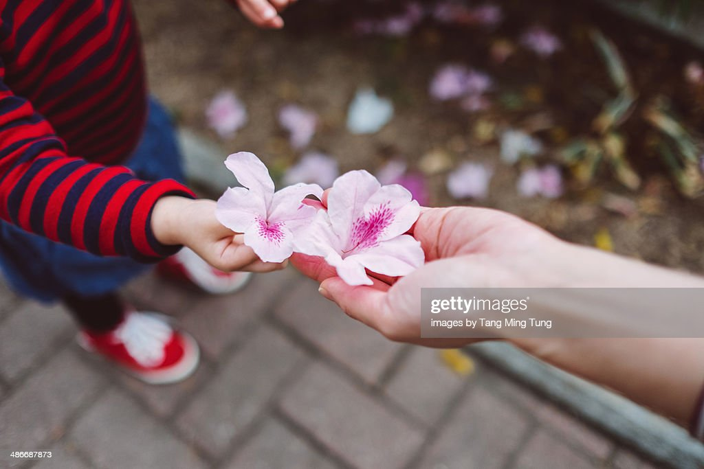 Flowers Holding Hands