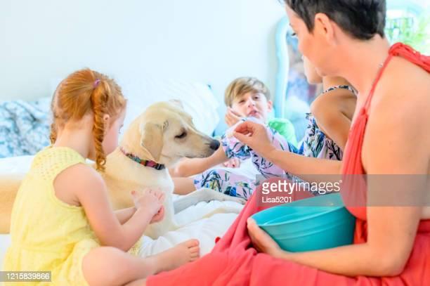 mamma con tre bambini e cane trascorrono del tempo insieme a casa rilassandosi - vertebrato foto e immagini stock