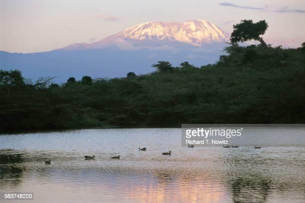 momela lakes and mount meru - meru filme stock-fotos und bilder