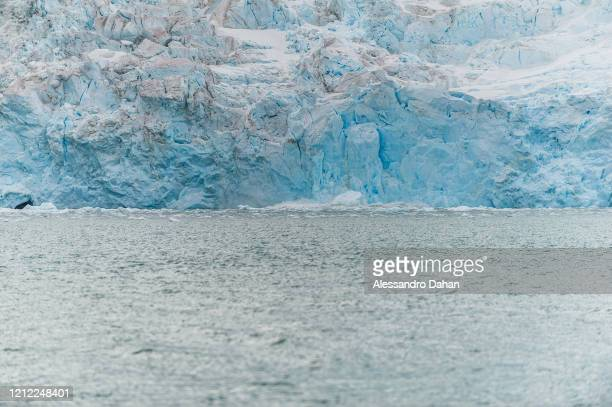 Moment when a piece of ice comes off the Dobrowolski Glacier, on January 04, 2020 in King George Island, Antarctica.