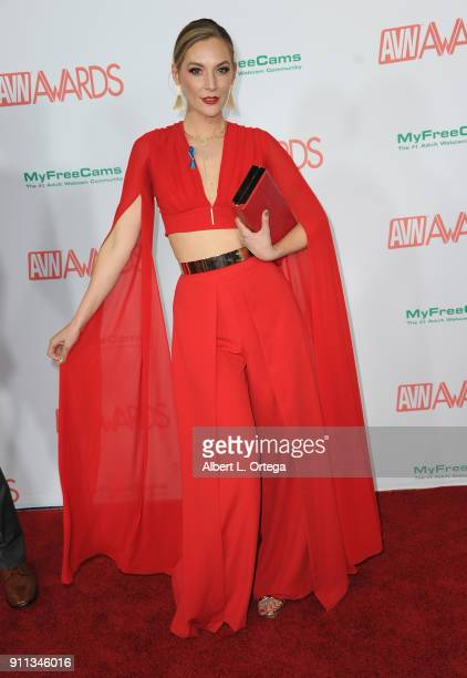 Mona Wales attends the 2018 Adult Video News Awards held at Hard Rock Hotel & Casino on January 27, 2018 in Las Vegas, Nevada.