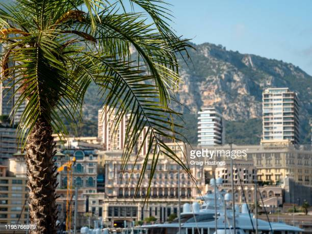 monaco cote d'azur port hercule marina and waterfront. luxury yachts and residential apartments scenic cityscape skyline - monte carlo stock-fotos und bilder