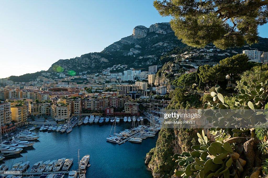 Monaco harbour, Fontvielle, Monaco : Stock Photo