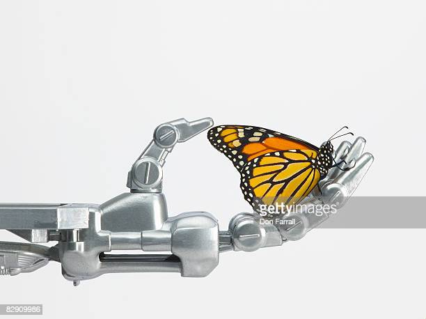 Monarch butterfly and robotic hand