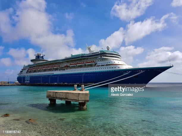 ボネールのミズ・モナーク - カリブ海オランダ領 ストックフォトと画像