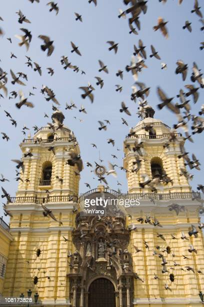 monasterio de san francisco of lima - lima animal stock pictures, royalty-free photos & images