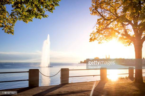 monastery and fountain at lake constance, friedrichshafen, germany - bodensee stock-fotos und bilder
