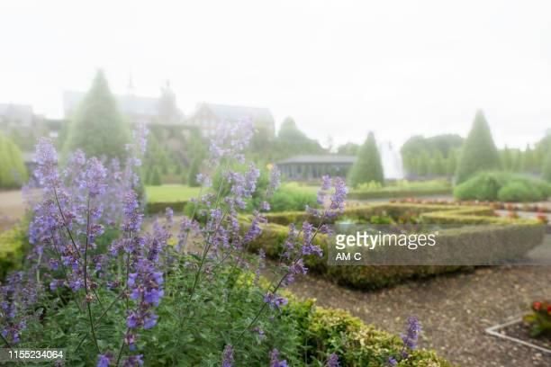 jardim do monastério, abadia de kamp, monastery de kamp, kamp lintfort, - abadia mosteiro - fotografias e filmes do acervo