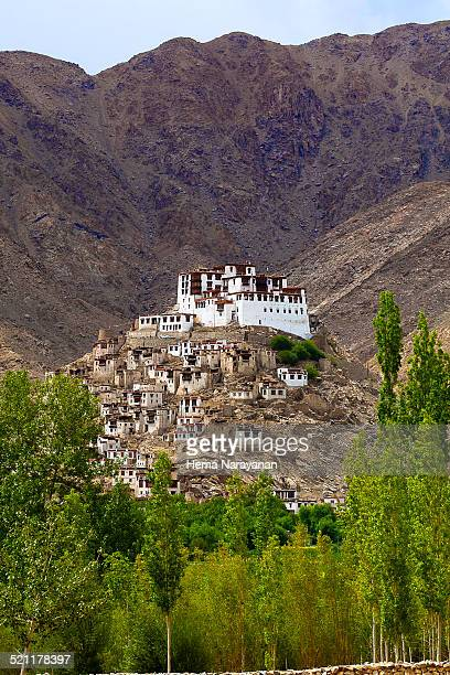 monastery in leh - hema narayanan stock pictures, royalty-free photos & images