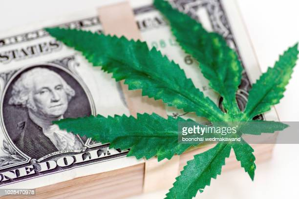 money and drugs, cannabis and dollars, cannabis leaf - marijuana money stock photos and pictures