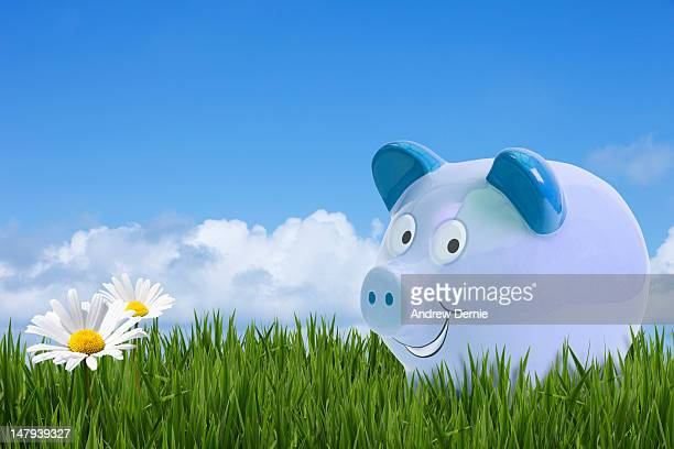money concept image - andrew dernie stock pictures, royalty-free photos & images
