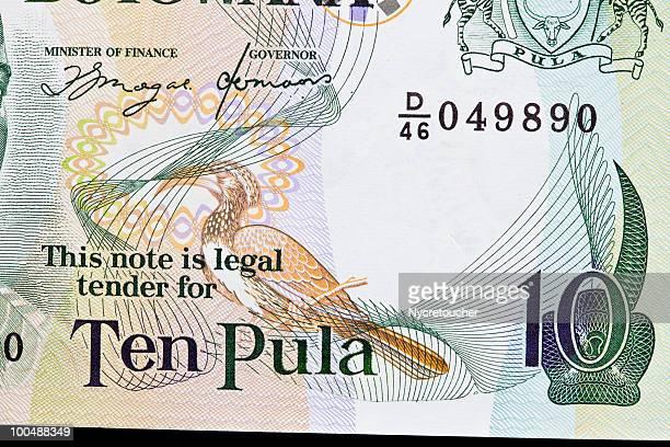 Money from Botswana