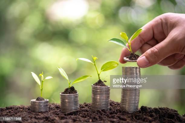 money growing - prosperity stockfoto's en -beelden