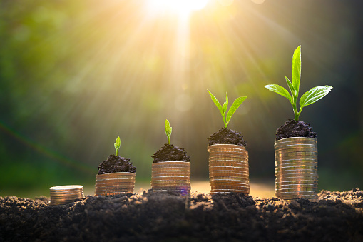 Money growth Saving money. Upper tree coins to shown concept of growing business 1163982506