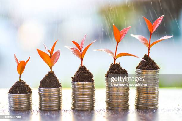 money growth,saving money,money grow - クラウドソーシング ストックフォトと画像