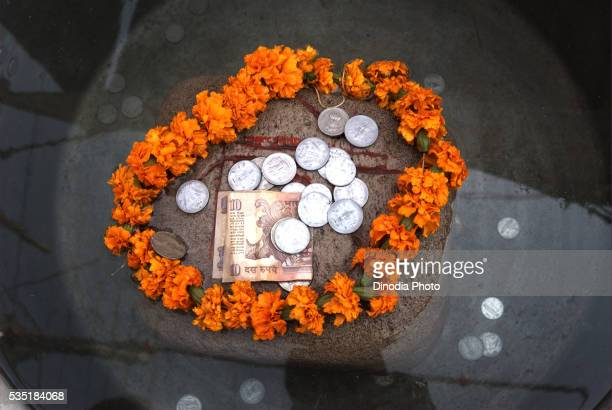 Money offered by devotees on a pumice stone floating in water during the Ardh Kumbh Mela at Allahabad, Uttar Pradesh, India.