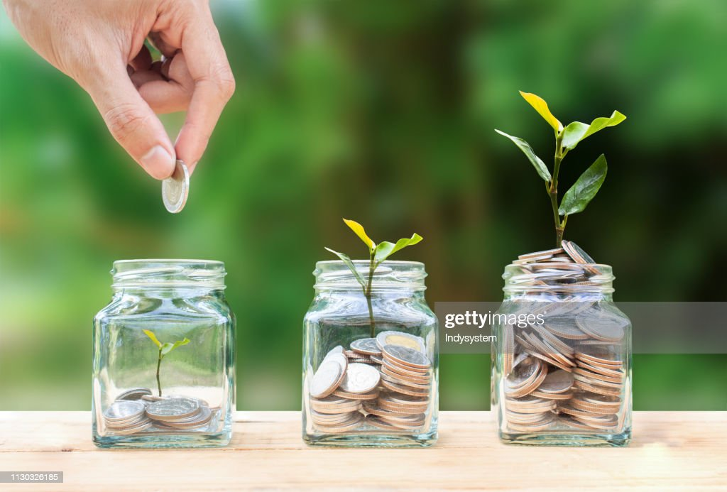 Money savings, investment, making money for future, financial wealth management concept. : Stock Photo