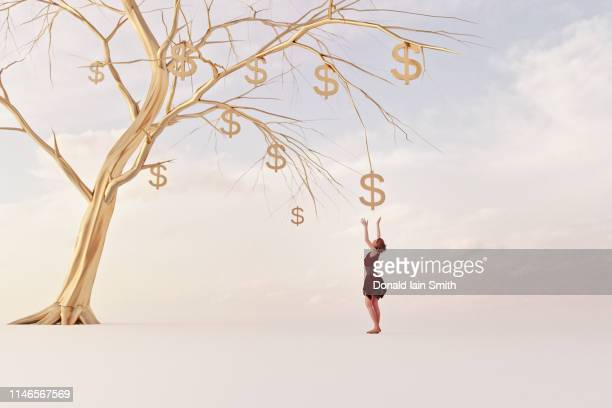 Money tree concepts: woman reaches up for golden dollar fruit