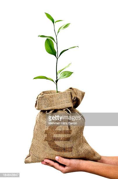 Money Tree/Money Bag With Euro in Human Hand