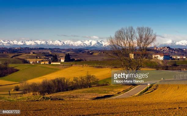 monferrato - 一月 ストックフォトと画像