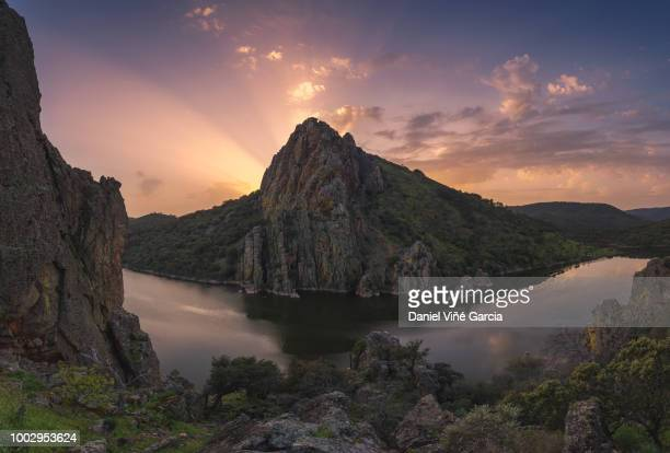 monfrague national park - caceres stock pictures, royalty-free photos & images