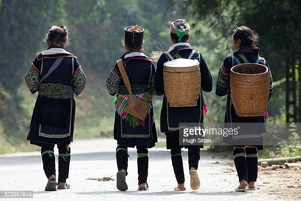 h'mong tribeswomen, sapa. vietnam. - hugh sitton stock pictures, royalty-free photos & images
