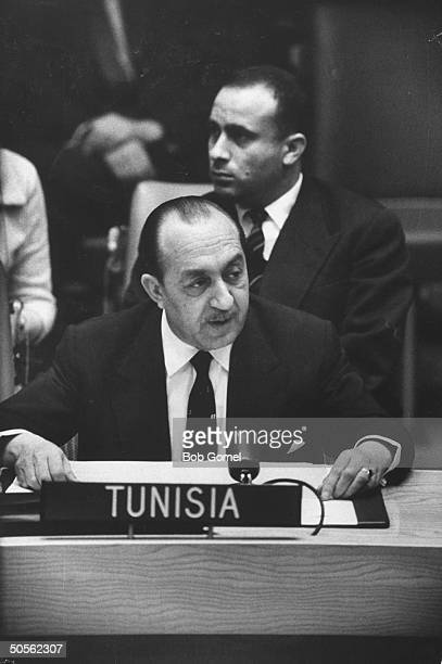 Mongi Slim speaking at United Nations Security council meeting
