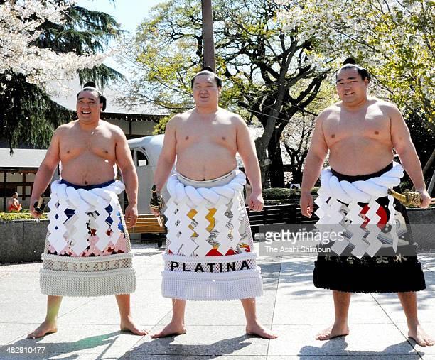 Monglian Yokozuna sumo grand champions Harumafuji Hakuho and Kakuryu their real names are Altangadasyn Khuchitbaatar Munkhbat Davaajargal and...