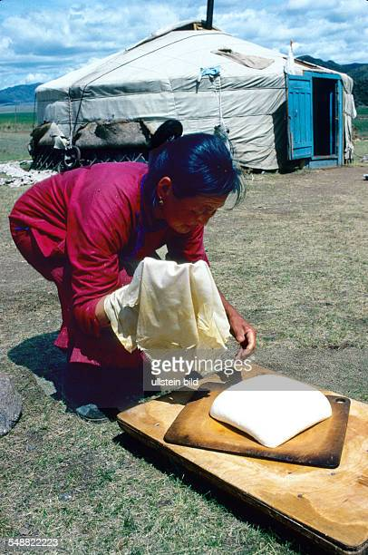 Mongolei, a nomad woman making sheep cheese in front of her Jurt in Bulgan province.