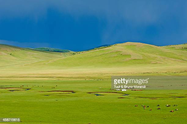 mongolia, arkhangai, snake valley, nomad camp - semi arid stock pictures, royalty-free photos & images