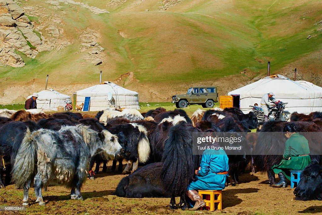 Mongolia, Bayankhongo : Stock Photo