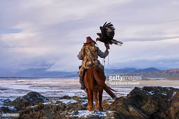 mongolia, bayan-olgii, eagle hunter - independent mongolia stock pictures, royalty-free photos & images