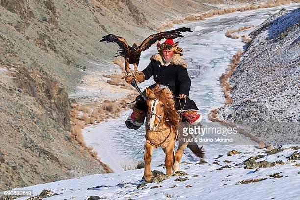 mongolia, bayan-olgii, eagle hunter - valle foto e immagini stock