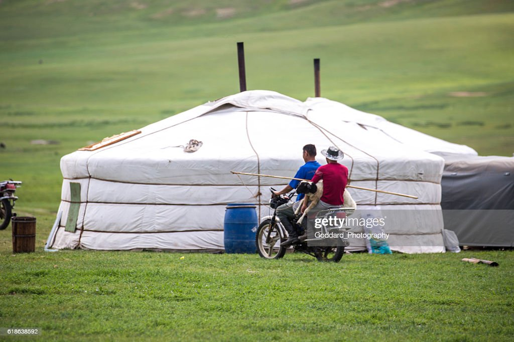 Mongolia: Ger In The Grasslands : Foto de stock
