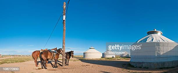 Mongolia horses tethered yurt village China panorama