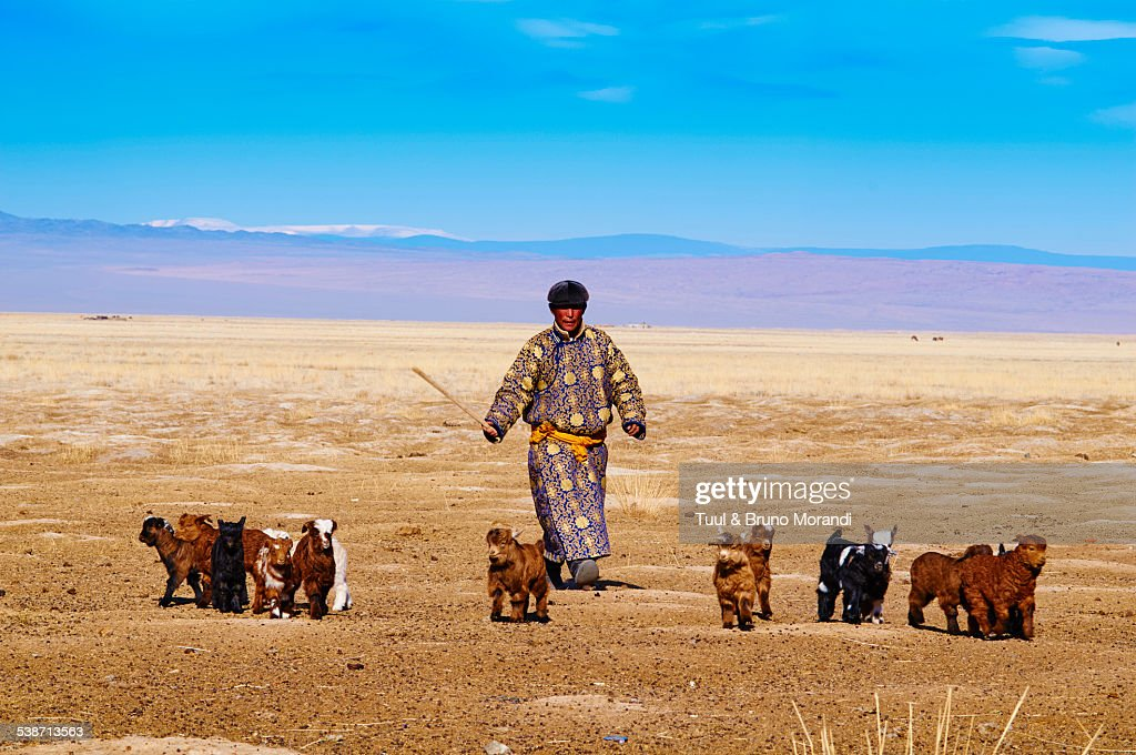 Mongolia, Khovd, nomad camp in winter, nomad man with goat.
