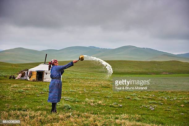 mongolia, nomad woman doing an offering - mongolian women stock photos and pictures