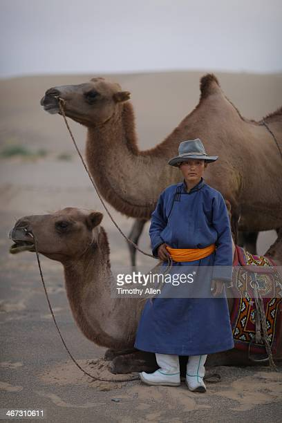 mongolian boy and bactrian camels in gobi desert - gobi desert stock pictures, royalty-free photos & images